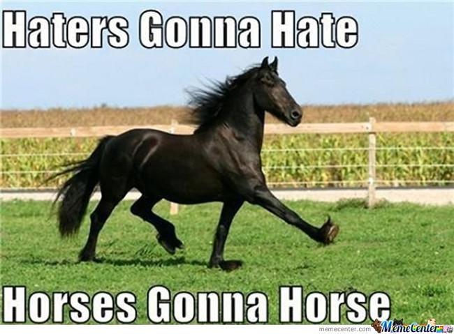 horse gonna horse