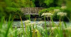 Tatton Park Travels