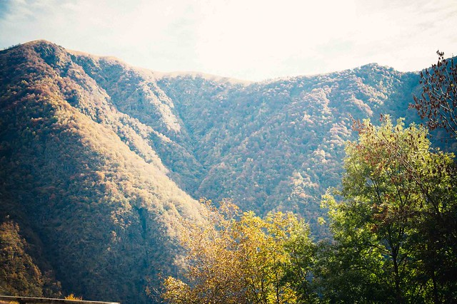 on the mountain-3