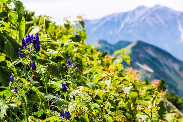 2014-09-06_00405_立山剱岳.jpg