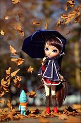 It's rainning autumn leaves....