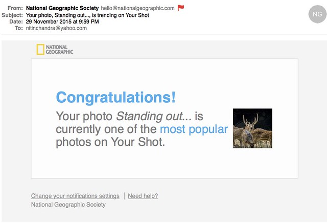 Your photo Standing out is trending on Your Shot