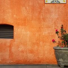 Minhas 30 melhores fotos de 2015: 27  Fotografia Contemplativa Paraíso, São Paulo, julho de 2015.  Vou compartilhar com vocês as minhas melhores fotos de 2015. Claro que é uma escolha subjetiva, mas espero que gostem!   #best30yuri2015 #melhores2015 #retr