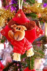 世界のクリスマス2015 <ウクライナ>