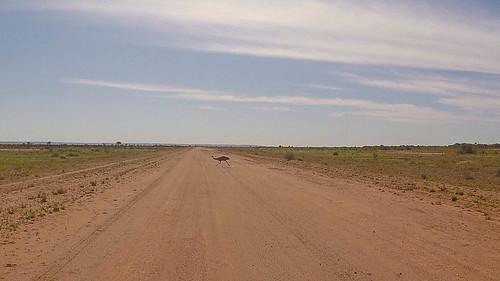 2015-12-25-21-14-28_Outback-0001.jpg
