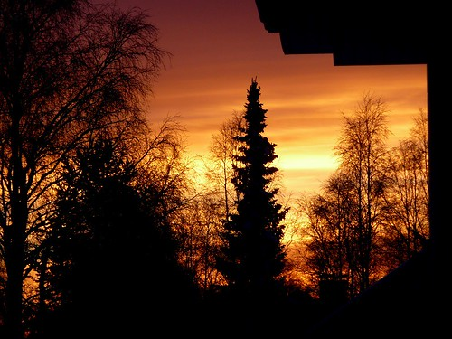 Sunset 241215