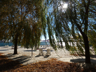 Image of Sugar Beach Beach with a length of 161 meters. sugarbeach ontario toronto canada november 2016