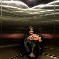 Boquete in an Elevator