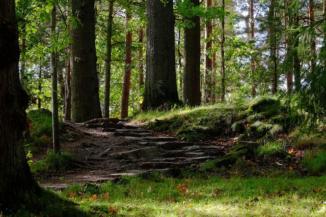The Pathway...