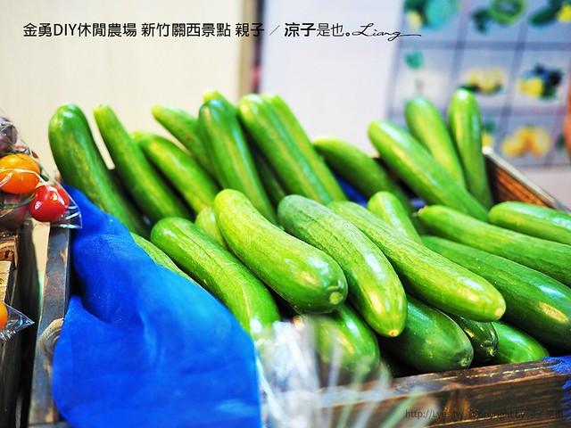 金勇DIY休閒農場 新竹關西景點 親子 25