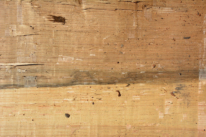 Wood Texture #6