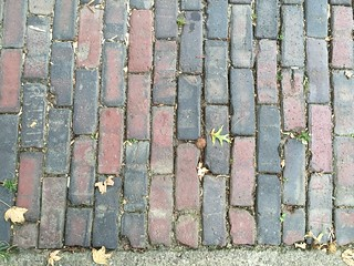 Alanna Nelson travels brick paved streets Athens OH