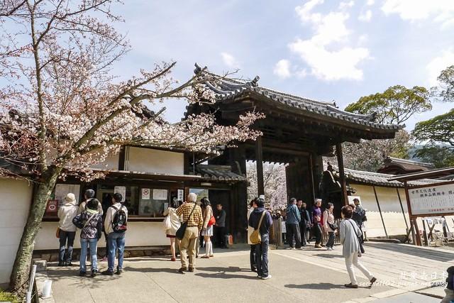 0402D8京都醍醐寺-1160259