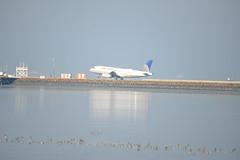 N815UA landing SFO 1-2-15 3