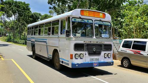 bus public asia transport sri lanka