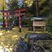 Kyoto touring