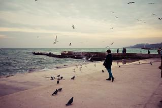 Image of Пляж Ланжерон (Пляж «Ланжерон») Lanzheron Beach near Odessa.