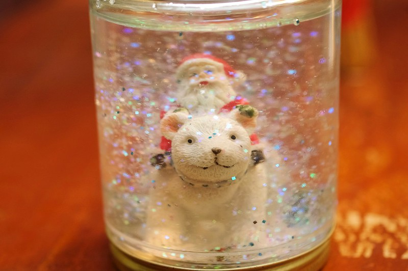 341/365. our DIY snow globe.
