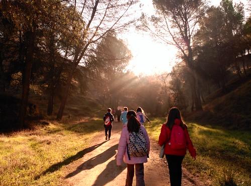 Educacion Ambiental Asociacion de Ciencias Ambientales (8)