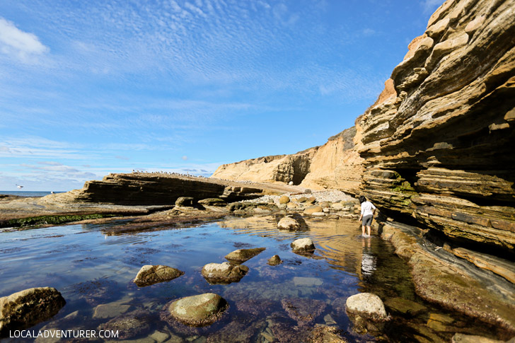 Looking for the Secret Sea Cave in San Diego.