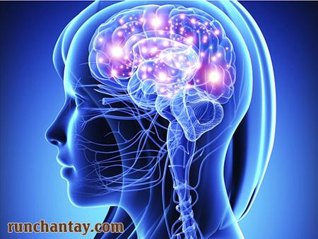 Rối loạn trương lực cơ do có sự bất thường trong hệ thống não bộ
