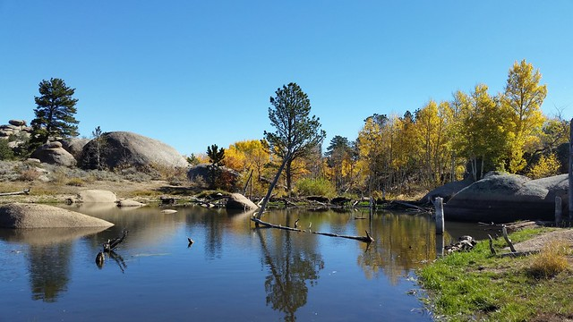 Beaver dam along a dirt road near Vedauwoo State  Park in Wyoming