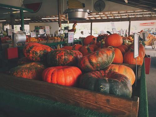 Fall in Alabama.... #Alabama #Fall #pumpkin #squash #melon #farmers #FarmersMarket #season #fruit #vegetables