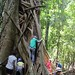 Wildcraft Kids Camp