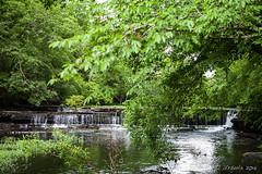 Big Falls Duck River 1958