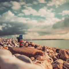 Les voyageurs.... Savoir prendre son temps pour contempler la nature...