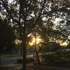29 November 2016 #sunset #samespotforayear #vso #vsocam #nofilter