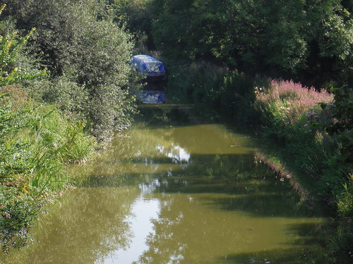 Kennet & Avon Canal from Pains Bridge