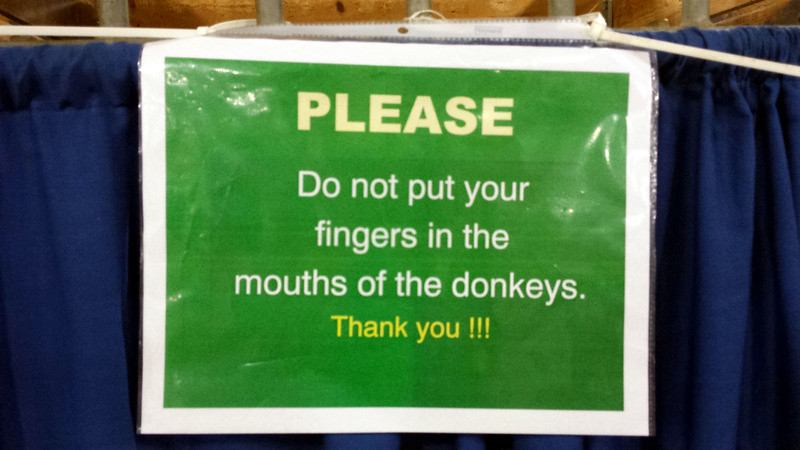 Sign: Please do not put your fingers in the mouths of the donkeys.
