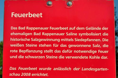Bad Rappenau Salinenpark Feuerbeet Kohle Salz Blumen Foto Brigitte Stolle September 2015
