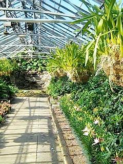 Interior-Rockefeller Park Greenhouse