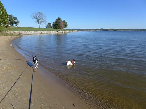 2015-10-02 - Walking at the Lake - 0004 [flickr]