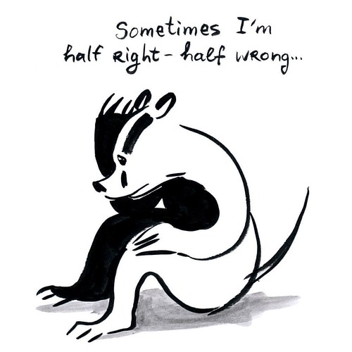 Sometimes I'm half right and half wrong... #badger #badgerlog