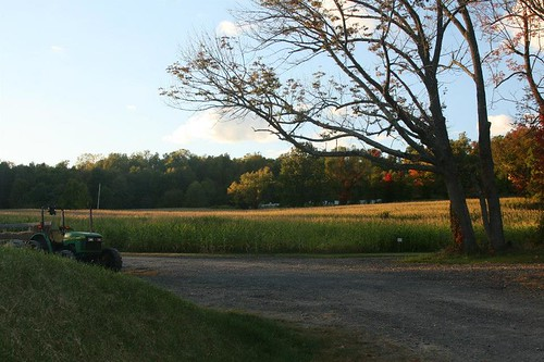 Lainway Farms