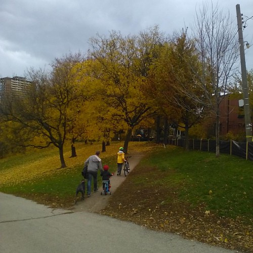 Family trip #toronto #riverdaleparkwest #riverdalepark #autumn