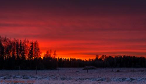 pink winter field clouds ngc talvi pilvet pelto laihia nikondx ostrobothnia eteläpohjanmaa youmademyday iltarusko d5200 isokylä