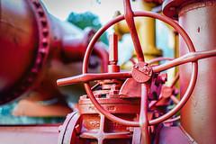 Gas Works Park - Hidden Beauty