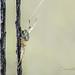 Trapeze Artist by Jennifer Witherspoon