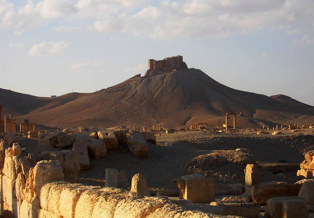 Palmira......quando la guerra era, Nikon E2100