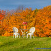 Fall into Winter - Equinox to Solstice #33 - Picnic