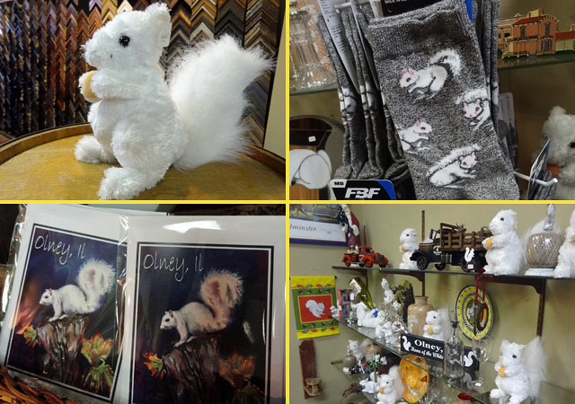 white-squirrel-shoppe-olney