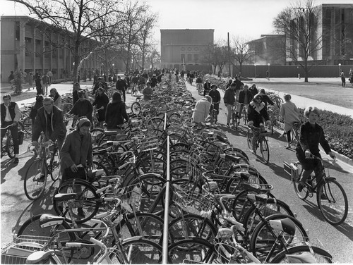 Bicycle racks at the University of California, Davis, 1963, by Ansel Adams