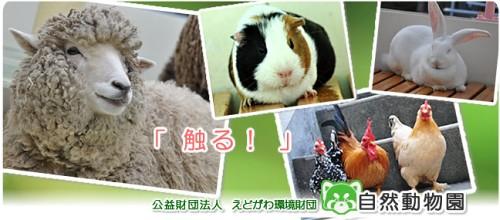 edogawa_zoo