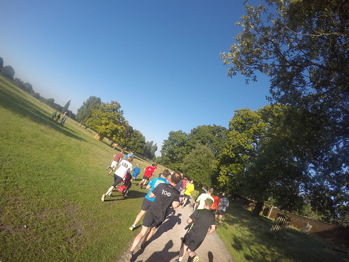 Bushy Park - Early run and parkrun - 26th Sept