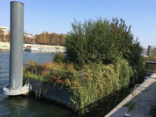 Berges de Seine, ile flottante