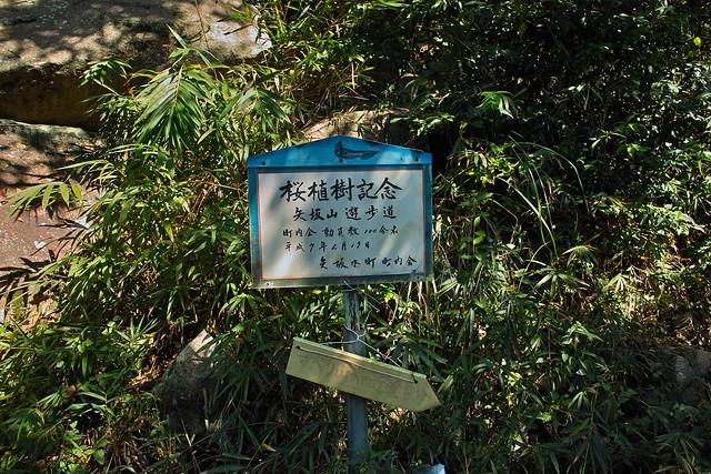 富山城址 #2